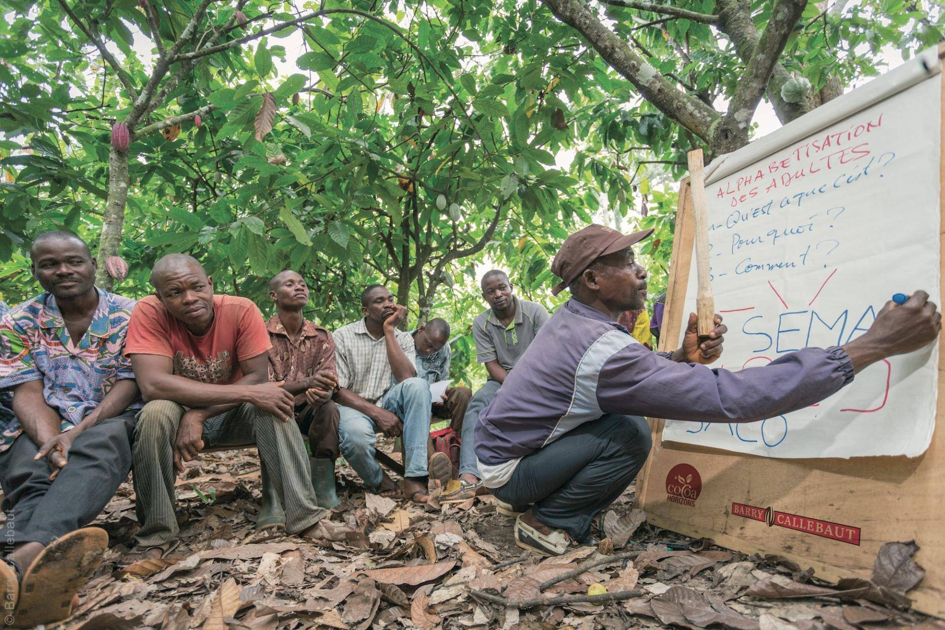 Cocoa farmer training in Côte d'Ivoire