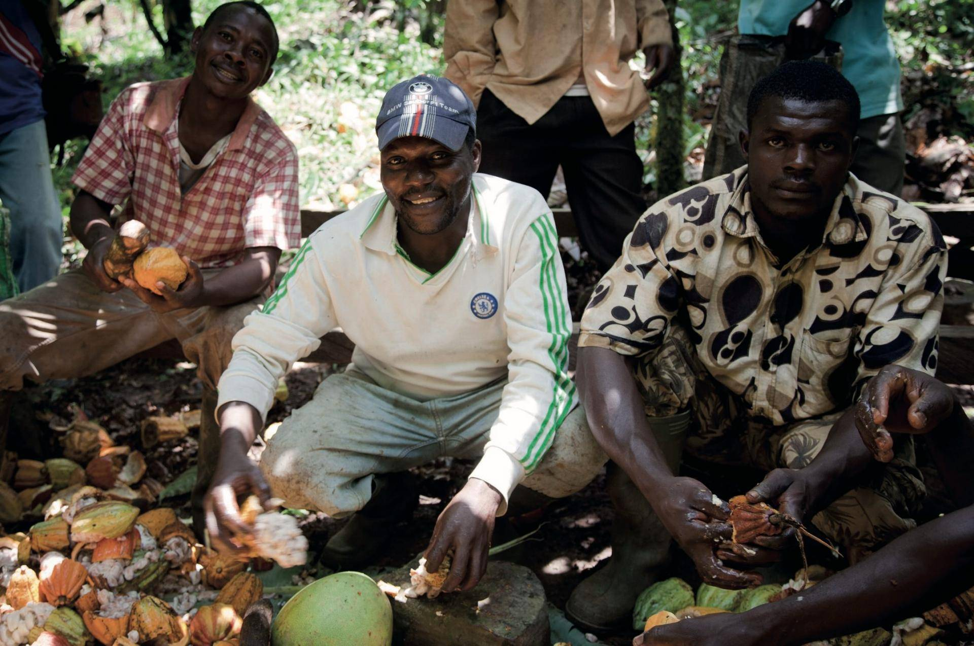 Barry Callebaut trains 50 cooperatives in Côte d'Ivoire to be certified by Rainforest Alliance
