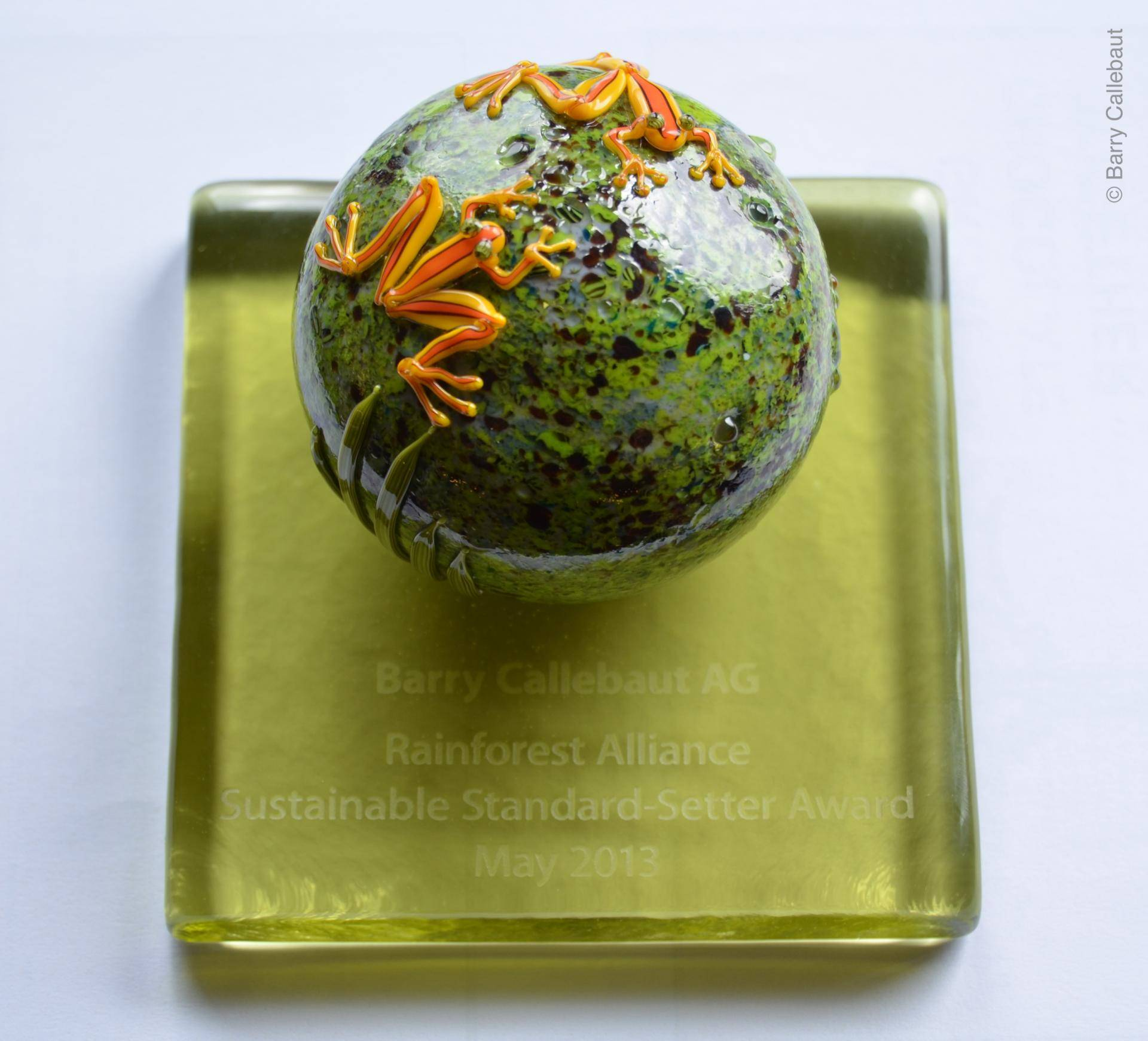 Rainforest Alliance Sustainable Standard-Setter Award