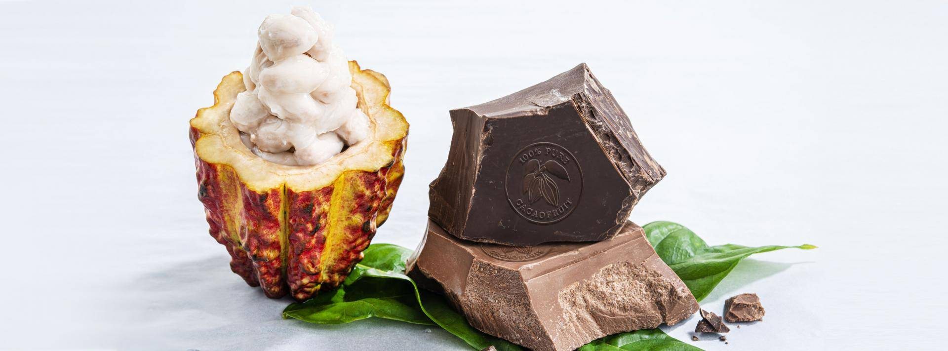 Barry Callebaut WholeFruit Chocolate