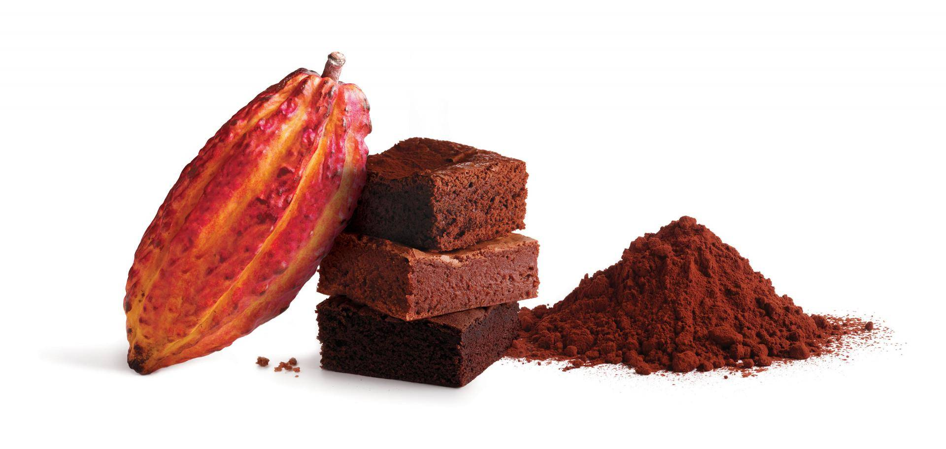 Bakery and Pastry applications with Bensdorp cocoa powder