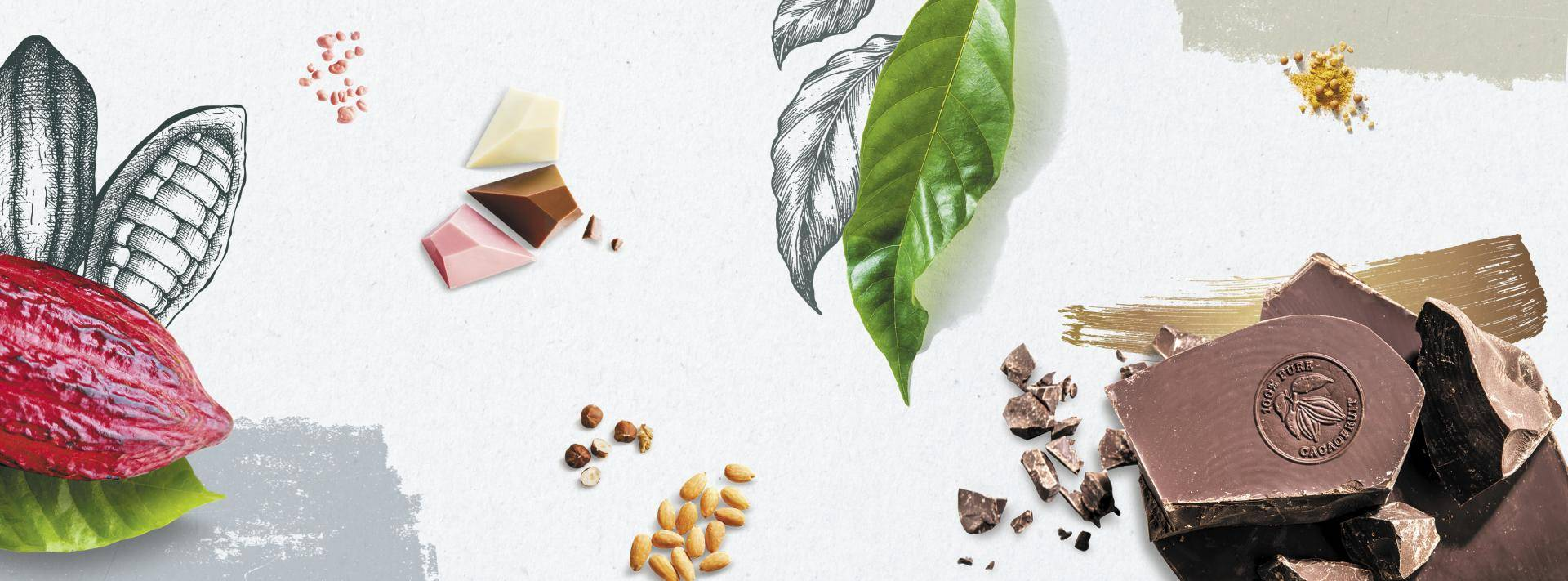 Barry Callebaut Group Half-Year Results 2019/20 - Strong volume growth and profitability