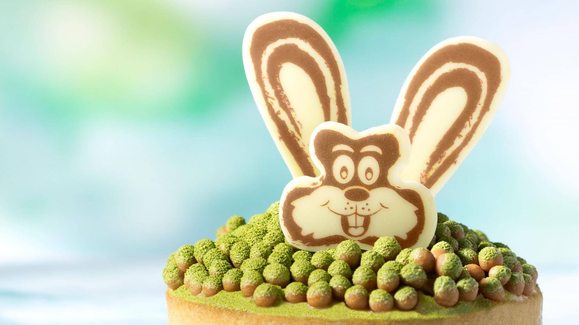 Pastry with chocolate decorations bunny