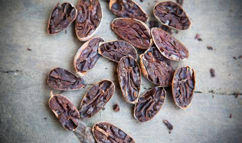 Signature flavors from cacao beans
