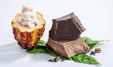 Barry Callebaut Cacaofruit Experience and Wholefruit Chocolate