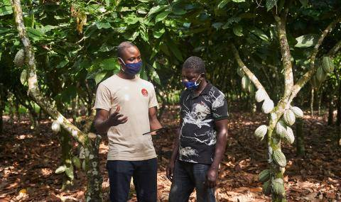 over-500000-cocoa-farmers-out-of-poverty