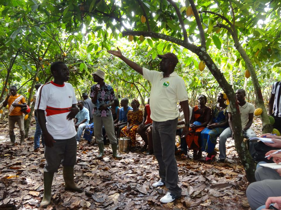 Barry Callebaut Farmer field school train cocoa farmers in good agricultural practices