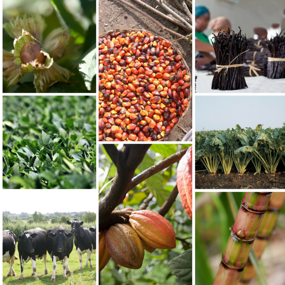 Barry Callebaut Sustainable Ingredients