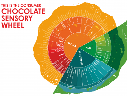 chocolate sensory wheel