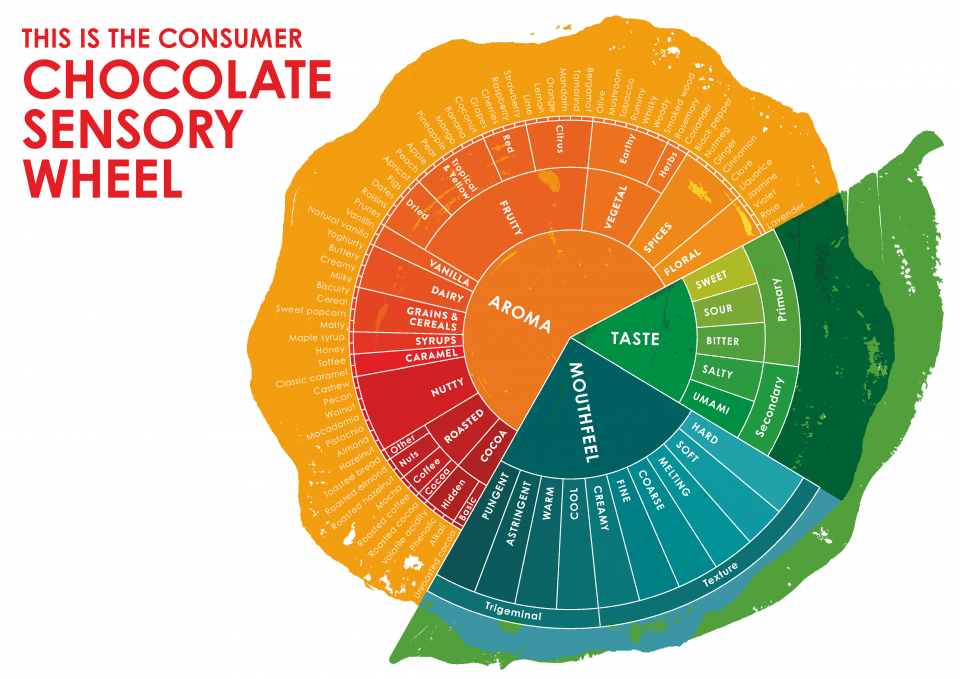 Barry Callebaut's Chocolate Sensory Wheel