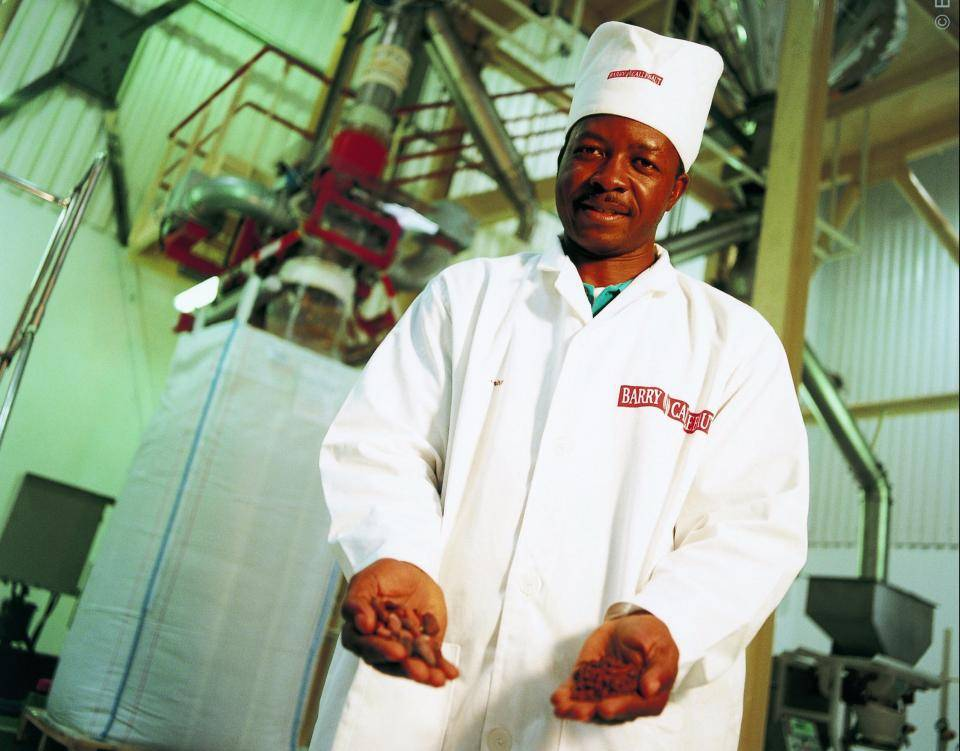chocolate factory employee showing nibs in his hands