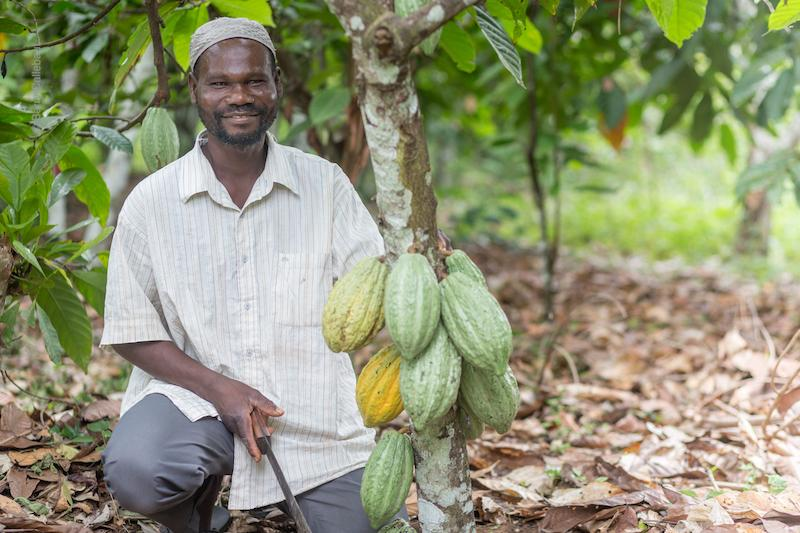 cocoa farmer in Côte d'Ivoire