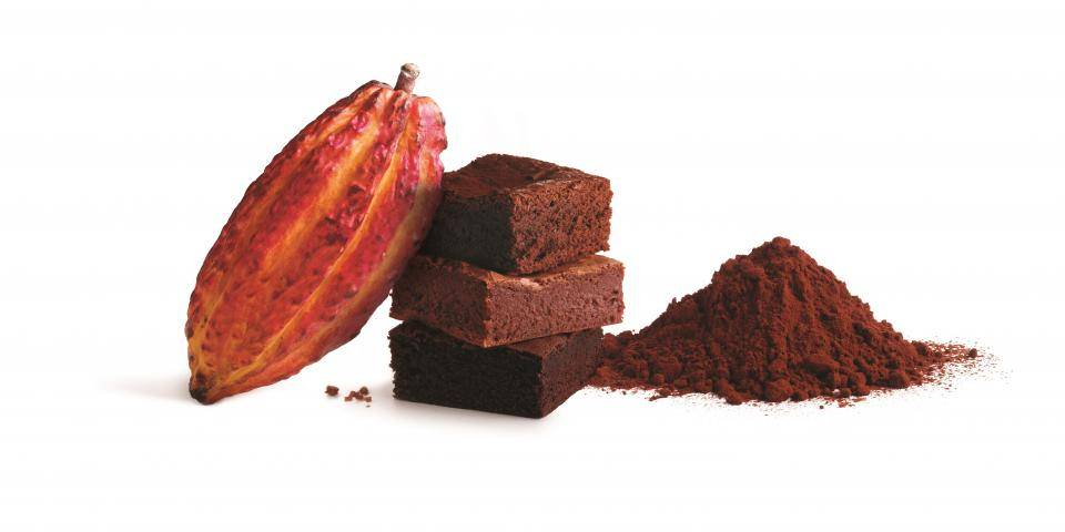 Barry Callebaut natural dark cocoa powder