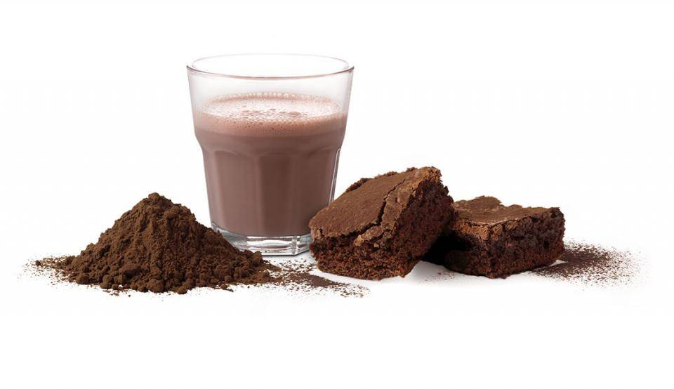 Organic Cocoa powders from Bensdorp