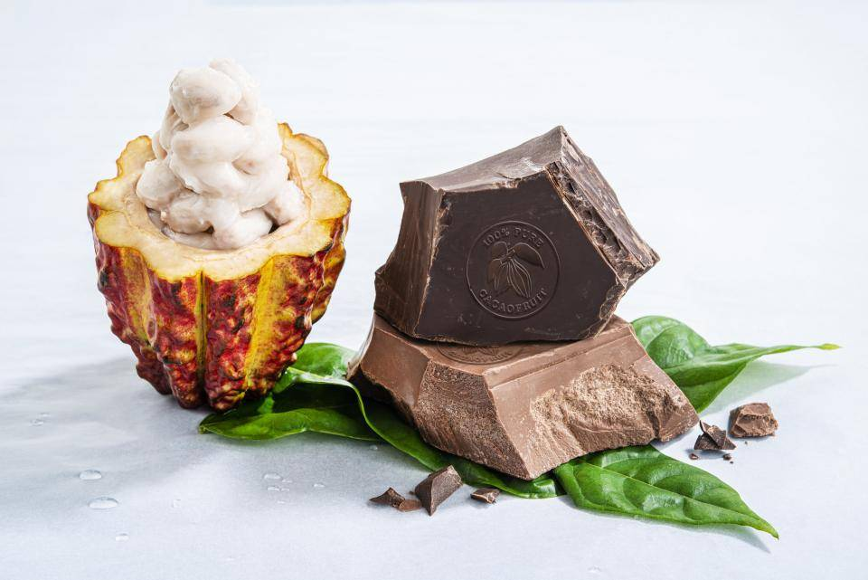 Barry Callebaut Cacaofruit Experience WholeFruit Chocolate Innovation 2019