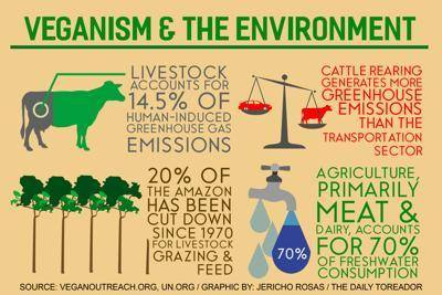 Vegan and environment