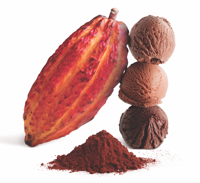 cacao pod and scoops of chocolate ice cream