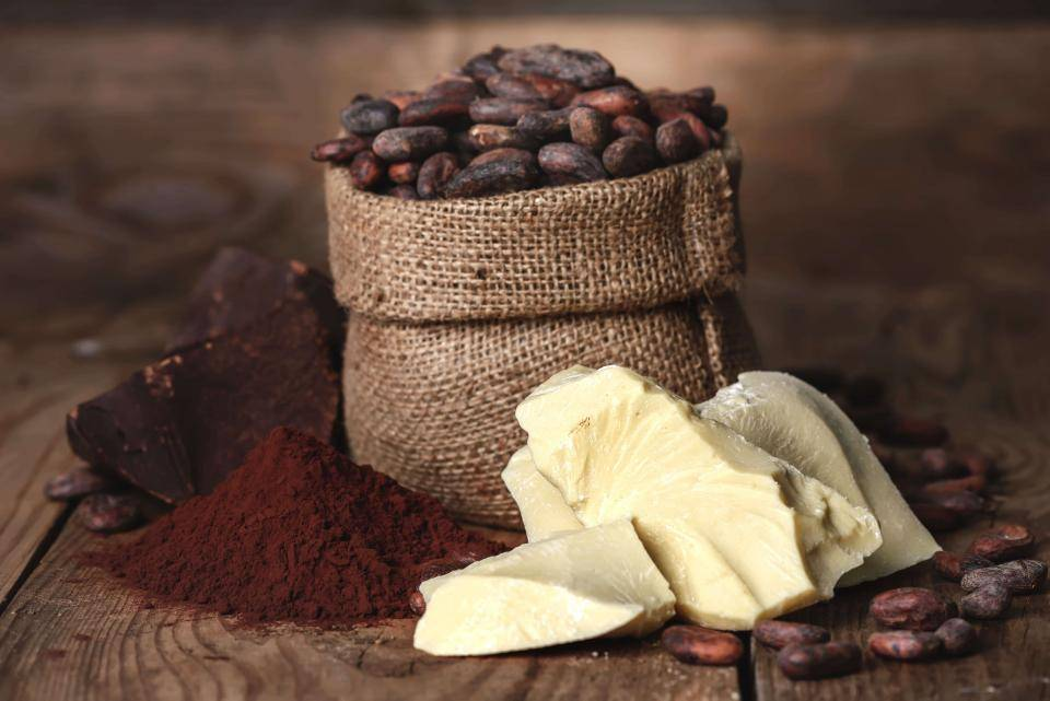 sack of cocoa beans surrounded by cocoa butter, cocoa powder, and cocoa liquor
