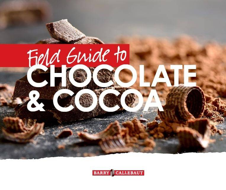 cover image for field guide to chocolate and cocoa