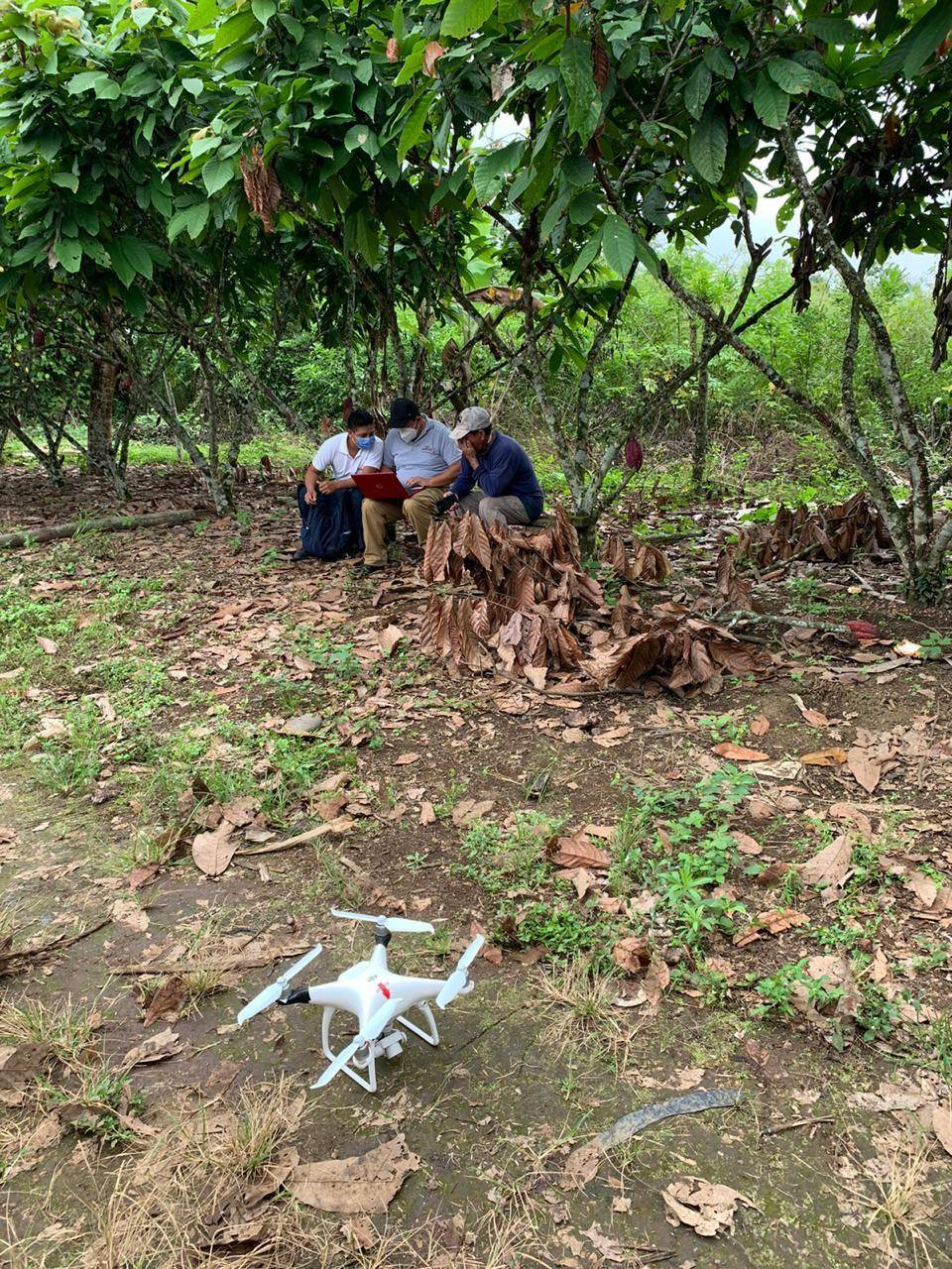 Farm mapping was undertaken by drone technology