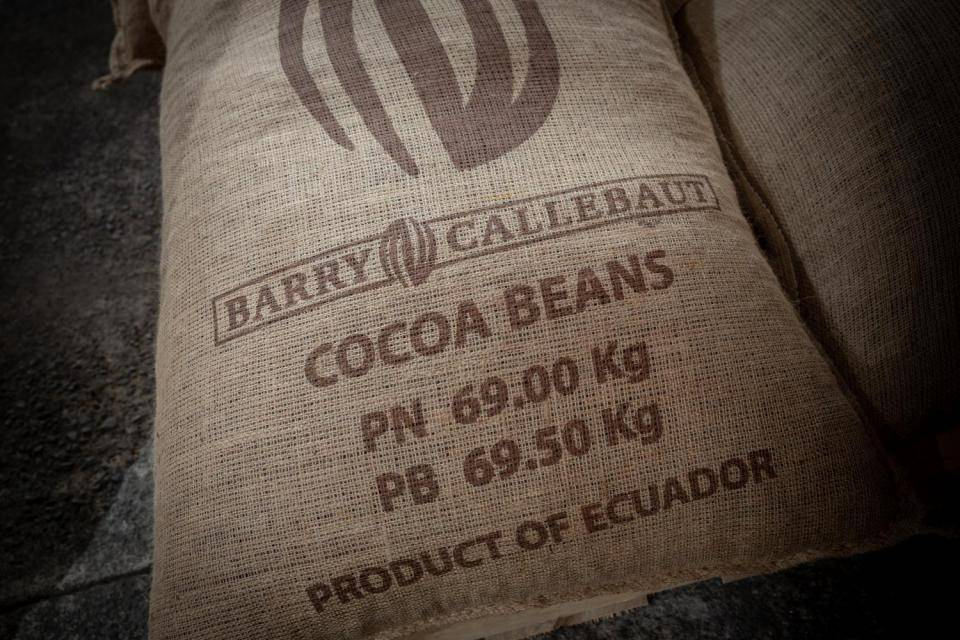 Sustainable cocoa - Forever Chocolate