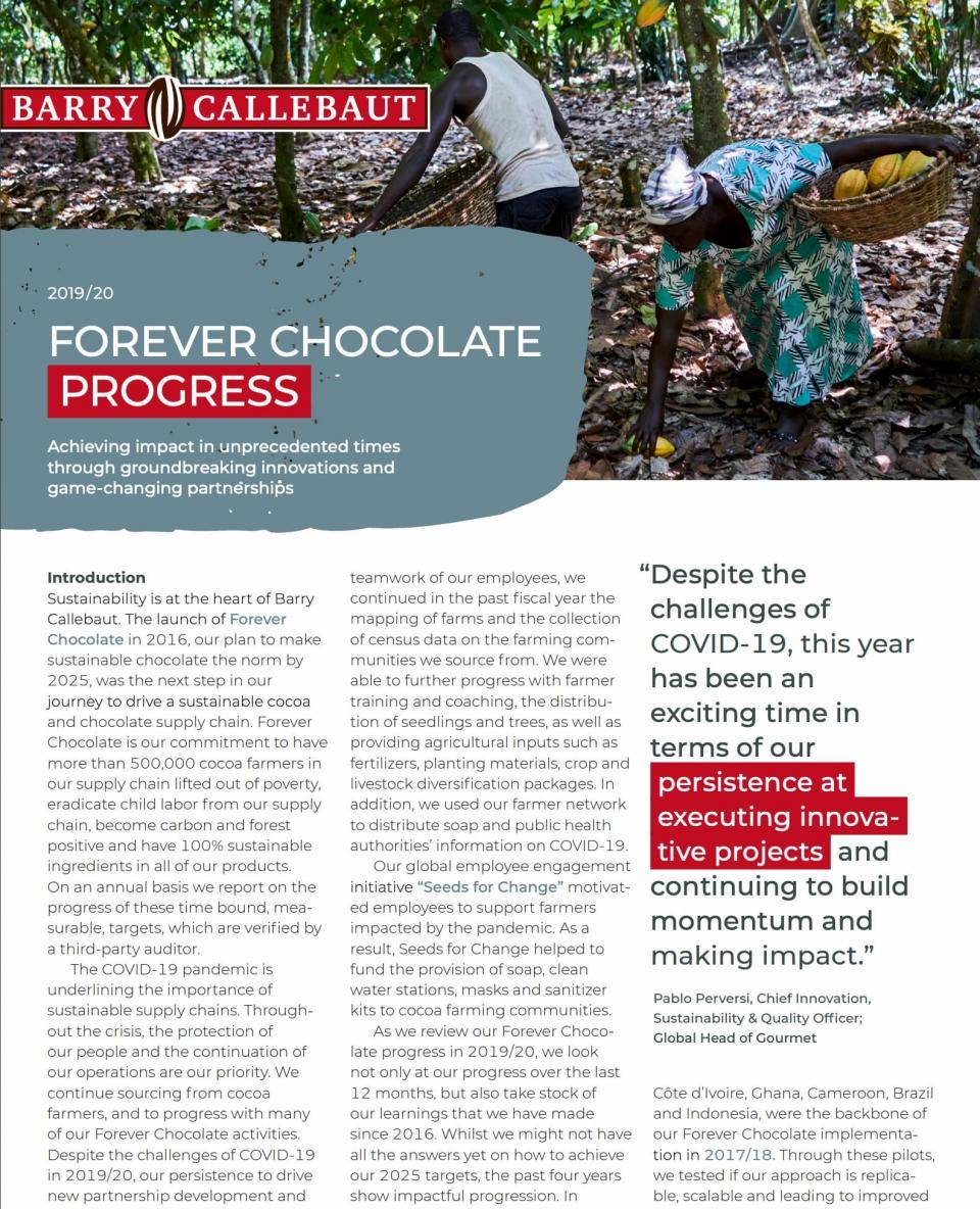 Forever Chocolate Progress Report