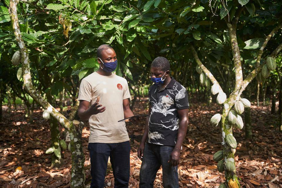 Over 500,000 cocoa farmers out of poverty by 2025