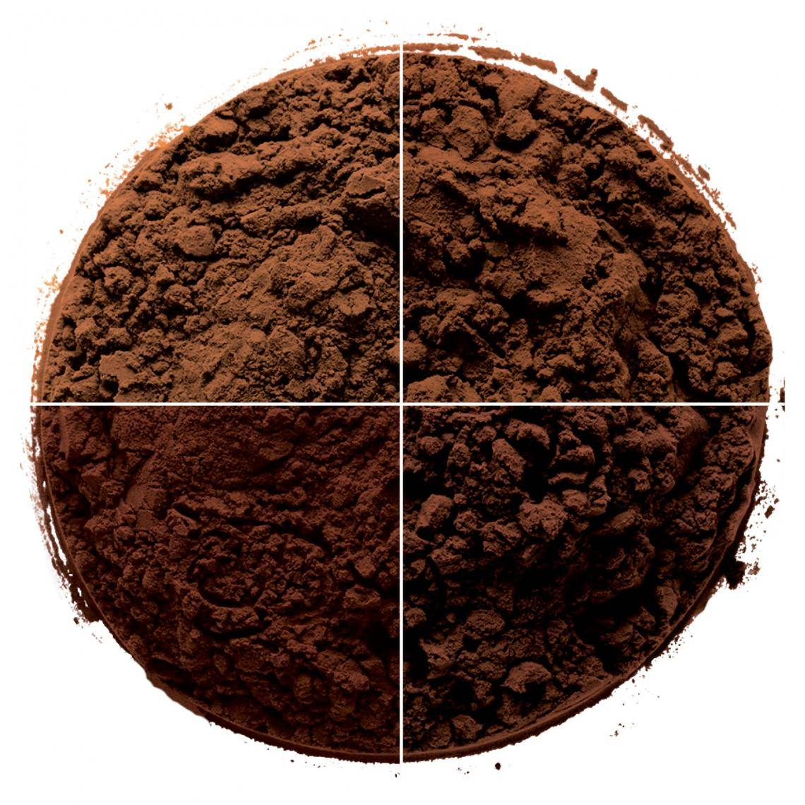 circle of cocoa powders
