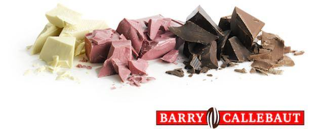Barry Callebaut Chocolate Blocks
