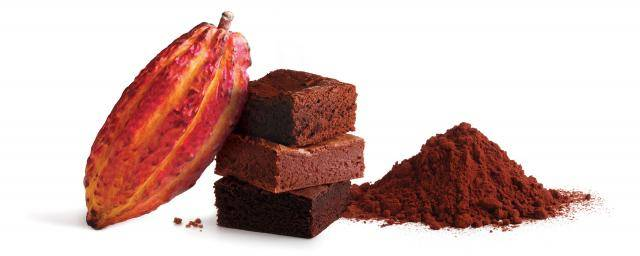Bensdorp The finest Cocoa powders for bakery applications