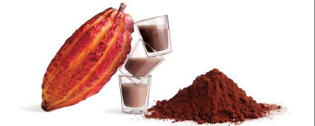 Bensdorp The finest Cocoa Powders