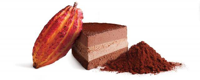finest cocoa powders for indulgent desserts