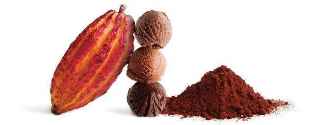 Bensdorp cocoa powders for ice cream