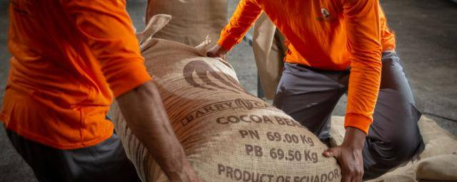 Ecuadorian cocoa farmers sustainability