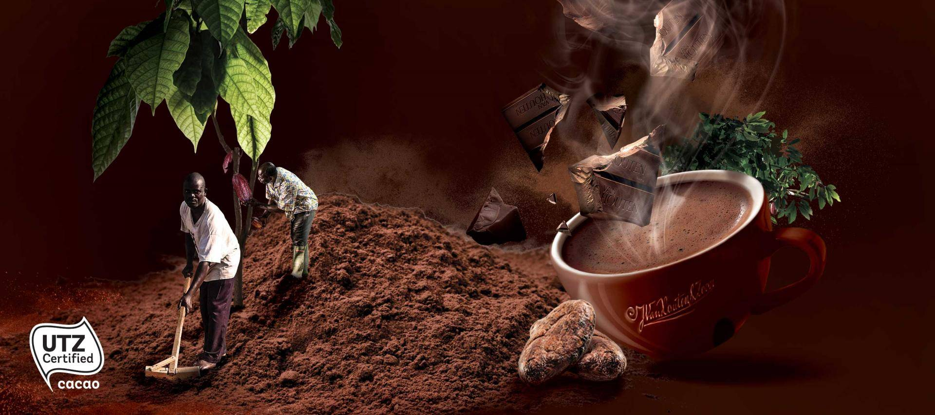 Making sustainable chocolate the norm