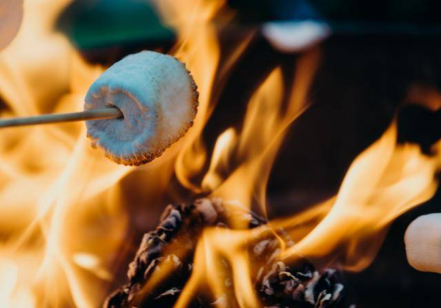 Barbecuing a marshmallow to make a s'more. Photo by Leon Contreras on Unsplash